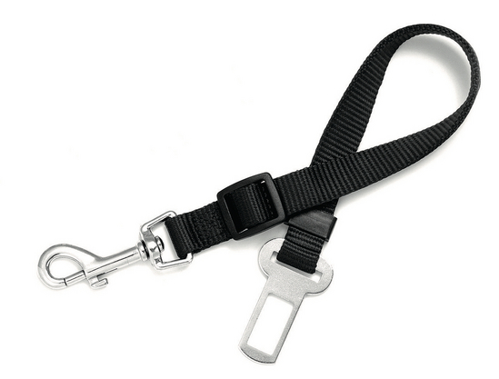 Connection Car Belt Black 20mm